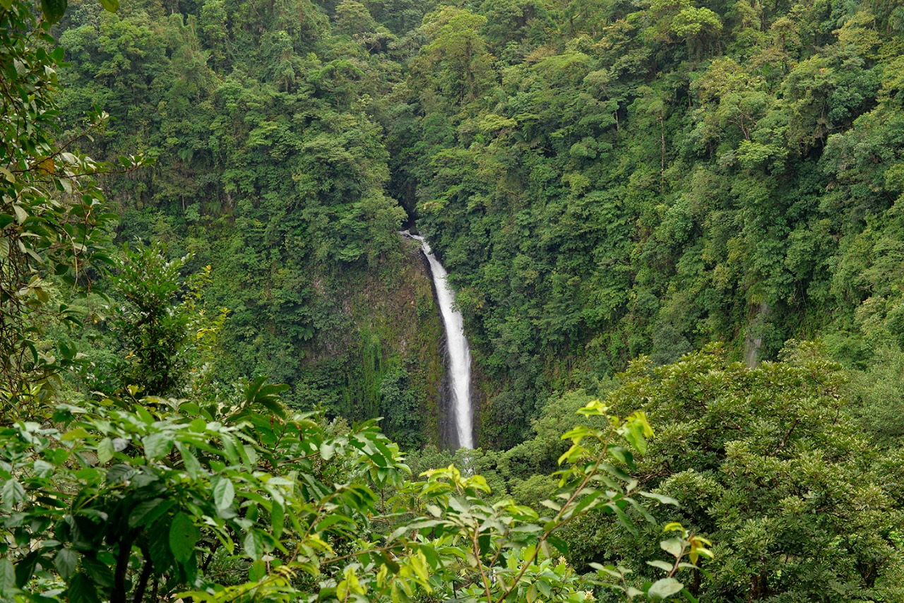 La Fortuna Waterfall Hiking Tour